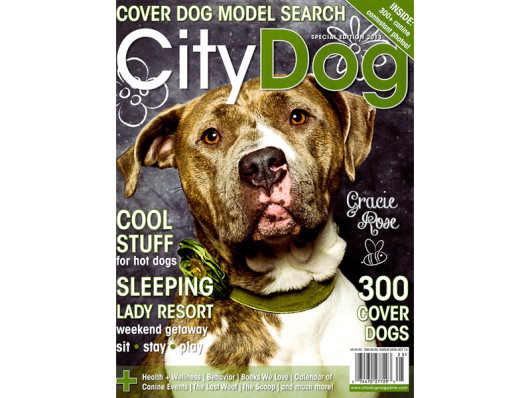 City Dog Magazine August 2013 Funny Rubber Pushpin Dog Toy