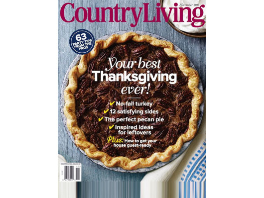 Country Living November 2013 Anchor Bike Ceramic Dog Bowls West Elm