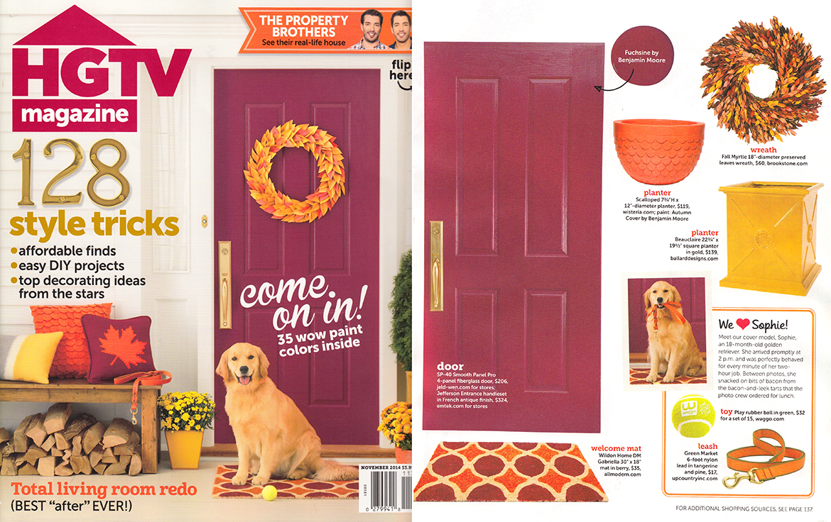 HGTV Magazine November 2014 Play Ball Dog Toy