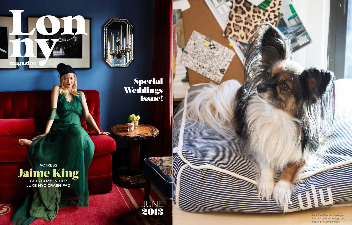 Lonny Magazine June 2013 Waggo Custom Striped Dog Bed