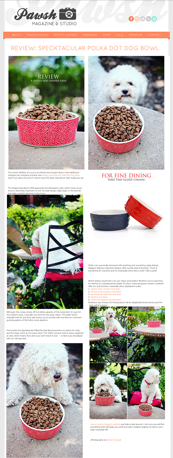 Pawsh Magazine July 2014 Cute Red Ceramic Dog Bowls