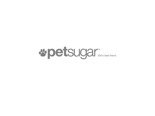PetSugar.com December 2012 Waggo Colorful Polka Dot Dog Beds