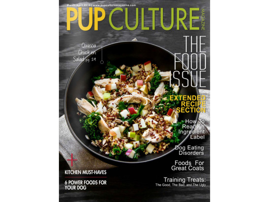 Pup Culture Magazine February 2013 Spotty Pink Waggo Dog Bowl