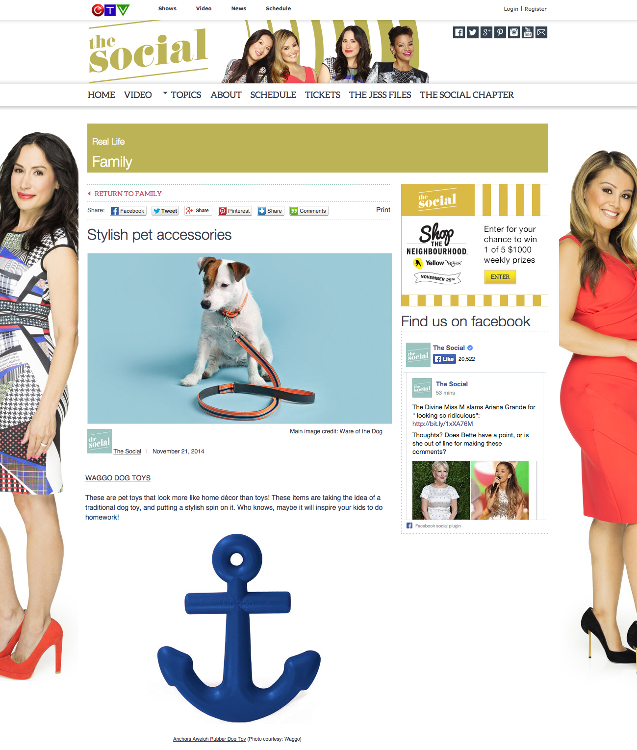 TheSocial.Com November 2014 Nautical Anchor Rubber Dog Toy