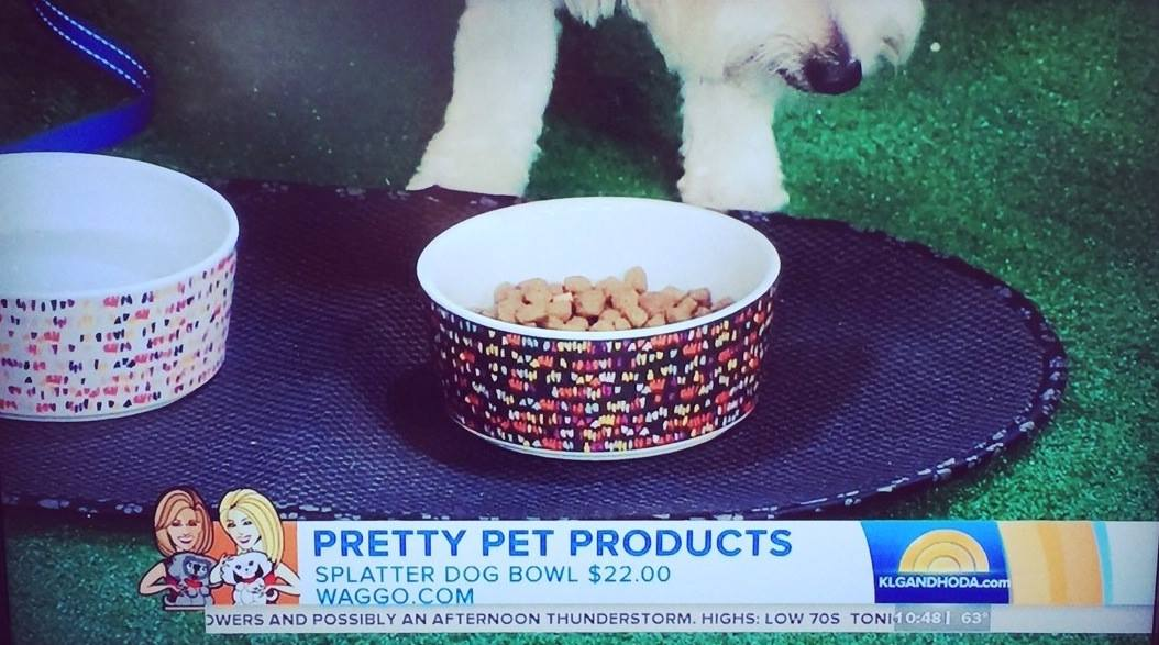 Today Show June 2014 Splatter Print Ceramic Pet Bowls