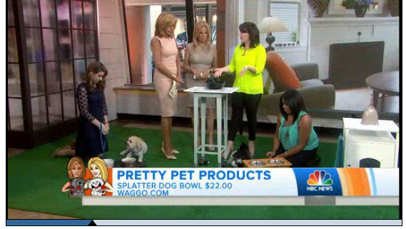Today Show June 2014 Patterned Ceramic Pet Bowls