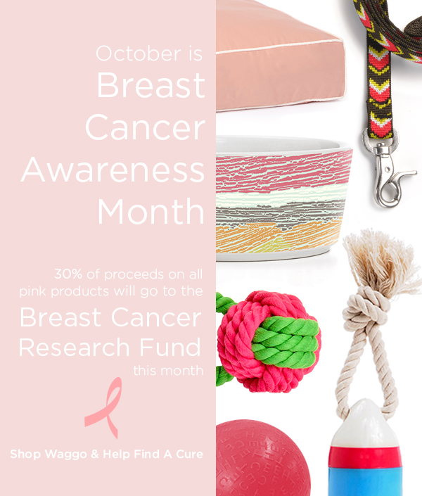 Waggo Donates to Breast Cancer Research