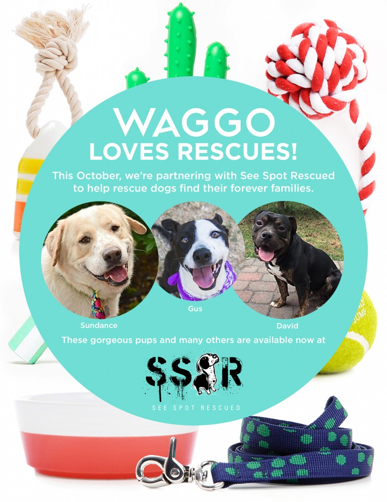 See Spot Rescued and Waggo
