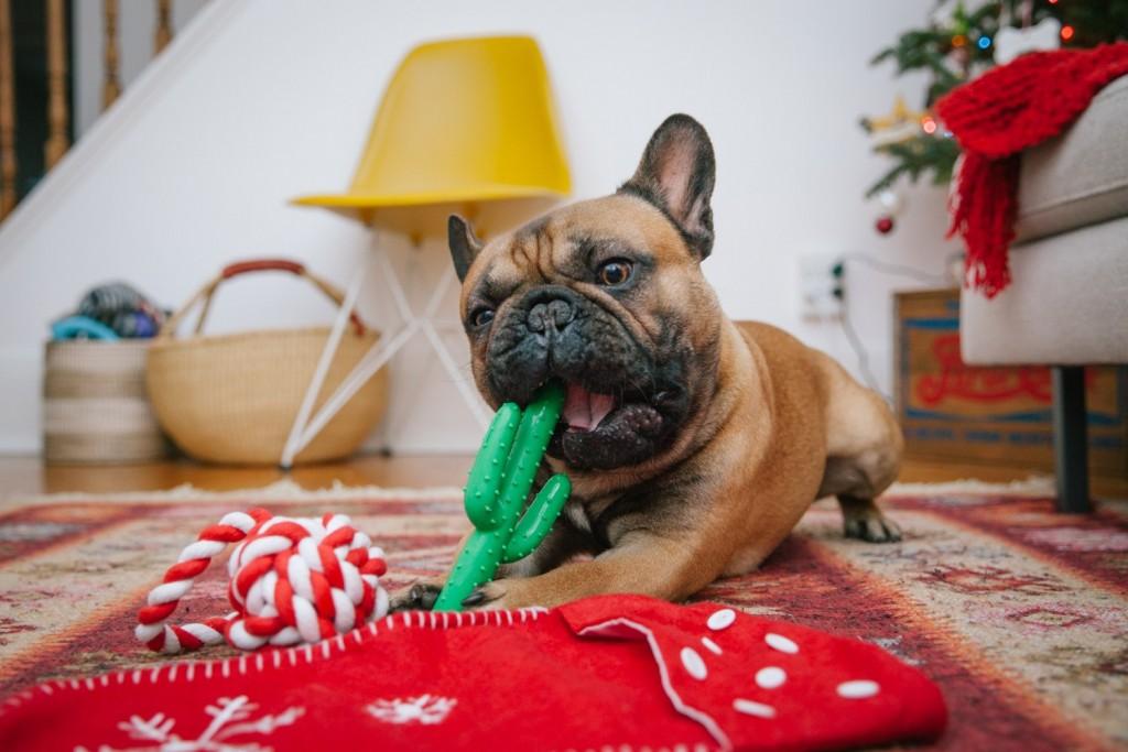 Waggo-City-Dog-Living-Toys-Christmas