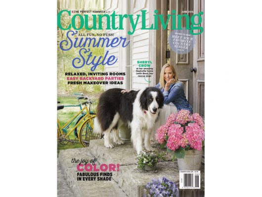 Country Living Magazine - June 2016 - Nautical Dog Toys