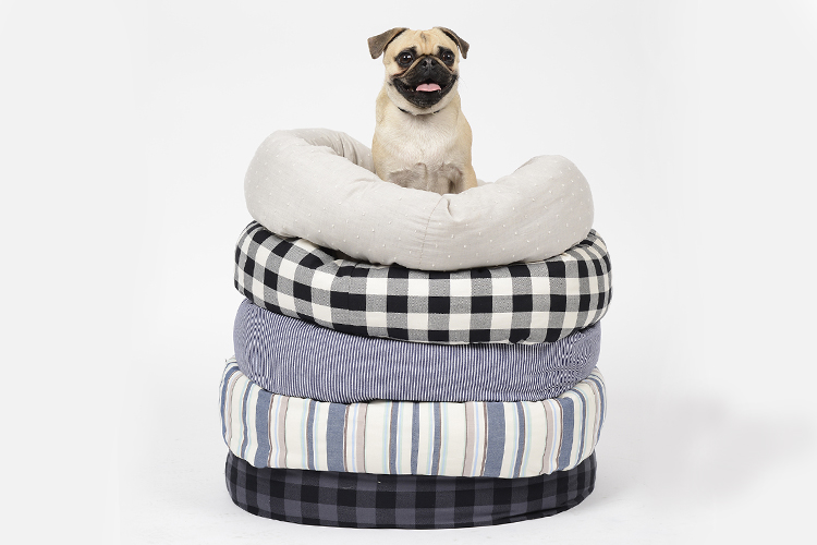The Best Dog Beds