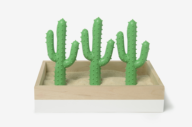 Best Dog Toy - Cactus Toy