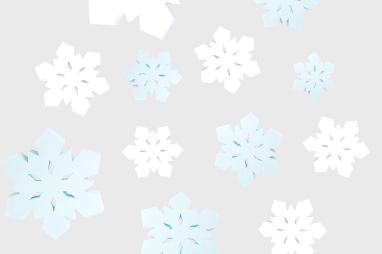 Snowflake Rubber Dog Toy